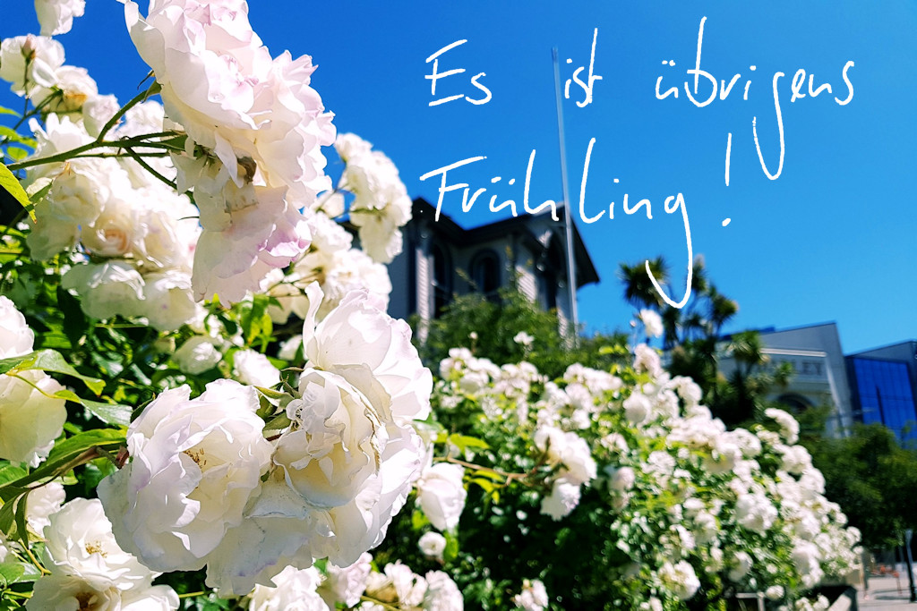 _fruehling